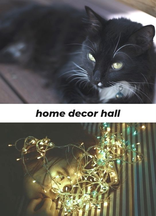 Home Decor Hall 351 20190112090306 62 Home Decor Diy Blog Home