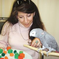Learn about the model-rival training technique as used by Dr. Irene Pepperberg in her work with Alex, the African grey parrot.