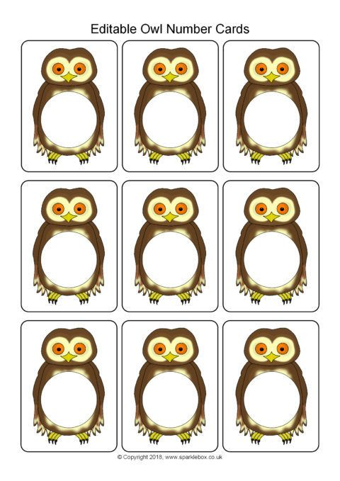 Editable Owl Number Cards Template Sb12430 Sparklebox Flash Card Template Cards Card Template