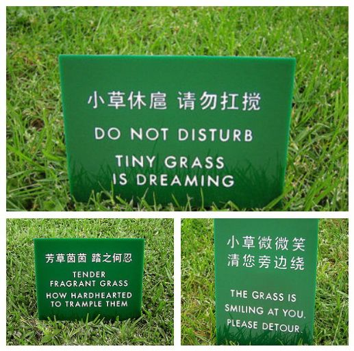 for the love of grass