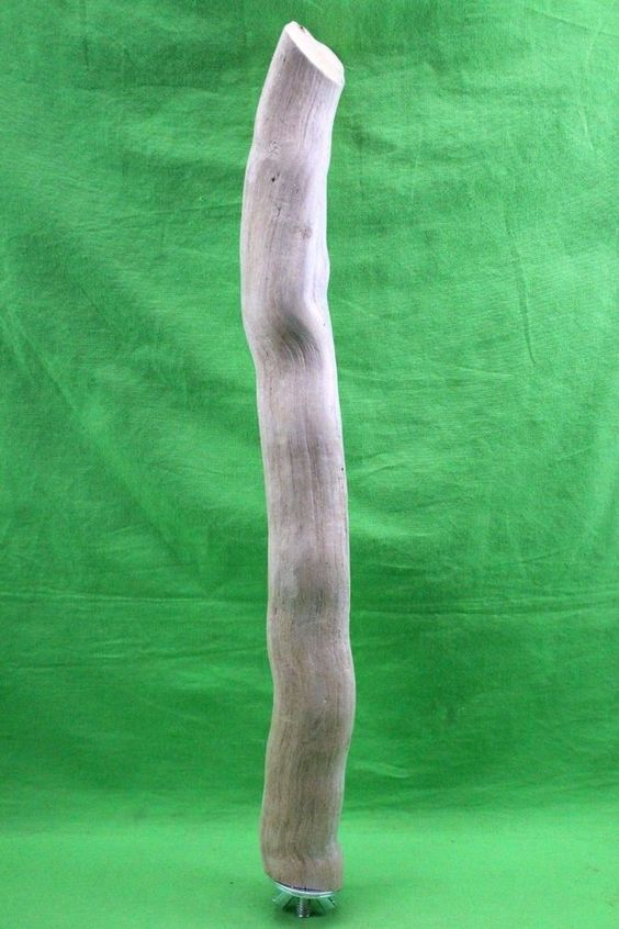 Driftwood Bird Perch Branch Natural Wood Parrot Safe With Hardware Included  #DriftwoodBoss  www.driftwoodboss.com