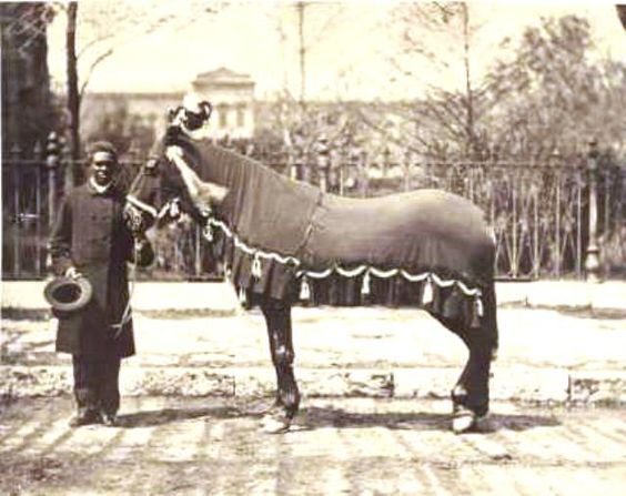 Rev. Henry Brown with 'Old Bob,' Abraham Lincoln's horse