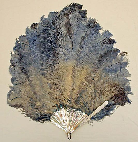 Feather Fan - American Or European   c. Late 19th Century  -  The Metropolitan Museum Of Art