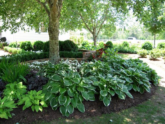Landscaping ideas for small slopes full shade garden for Small garden on a slope designs