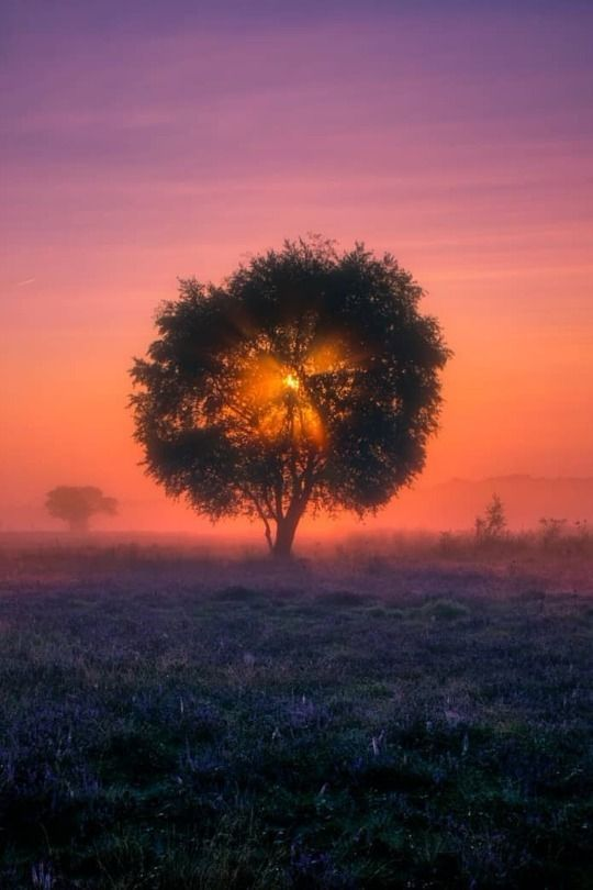 Follow Pinterest Nedym24 Nature Photography Cool Color Beauty Beautiful Beautiful Nature Nature Photography Nature