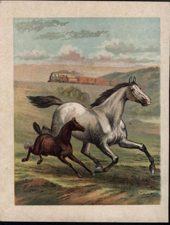 horse foal galloping train background c1900 antique color lithograph print realism - Train Pictures Print Color