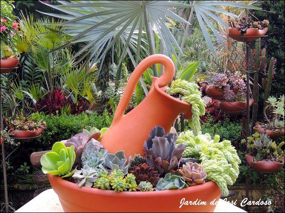 mini jardim de cactus:Jardim de Cactus&Suculentas by Josi Cardoso: História das Suculentas