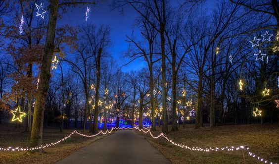 Starry Nights - Shelby Farms Holiday Festival and Christmas Lights ...