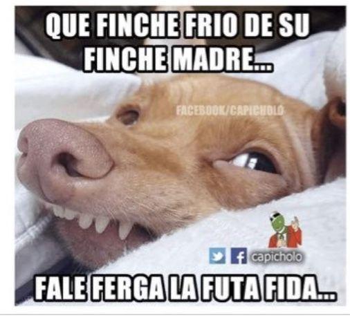 Pin By Mari Calvo On Frases Humor