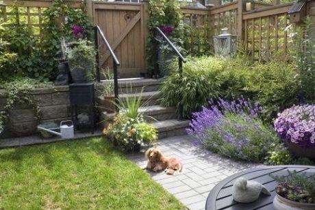 Small Garden Ideas From Dublin And Cork Garden Designers In 2020 Small City Garden Small Backyard Landscaping Dog Friendly Garden