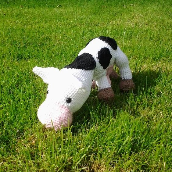 Stella de koe