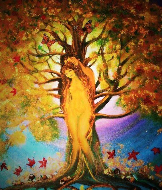 """Post  #: """"É que o amor é como árvore. Rebenta por si própri..."""
