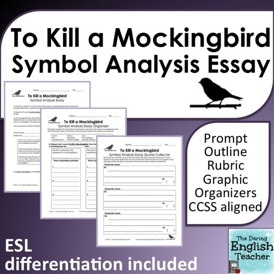 to kill a mockingbird commentary essay The to kill a mockingbird is one of is widely respected for a multitude of reasons but primarily for its minute and just commentary on the essay – to kill.