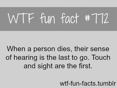 death facts more of wtffunfacts are coming here funny