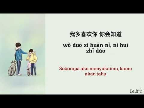 a love so beautiful ost versi mandarin 我多喜欢你,你会知道