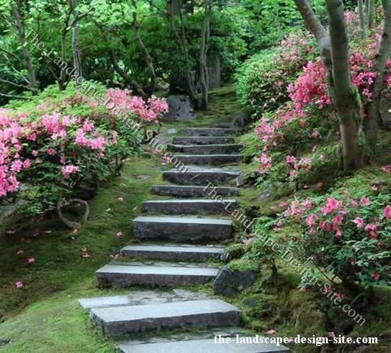 Shady woodland hillside steps simple slab steps leading for Hillside landscaping