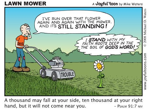 dreaming about mowing the lawn | The Christian Cartoons with the Joyful Message Joyful toons