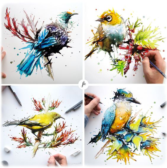 NZ Native Birds on Behance