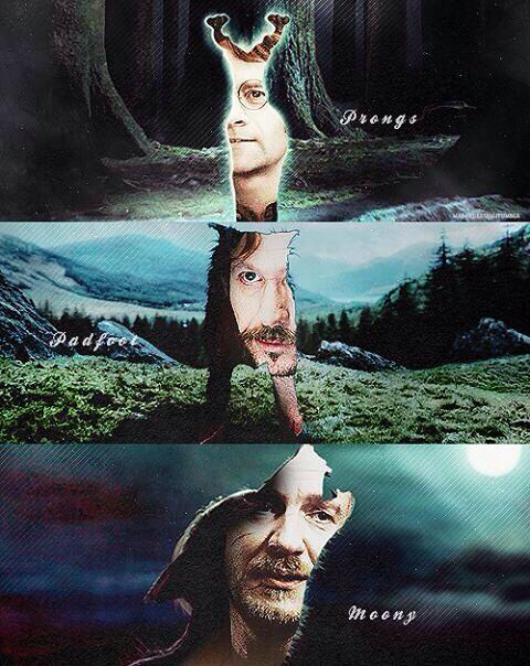The Marauders were definitely one of my favourite parts of Harry Potter. Remus (Moony), Sirius (Padfoot), James (Prongs)