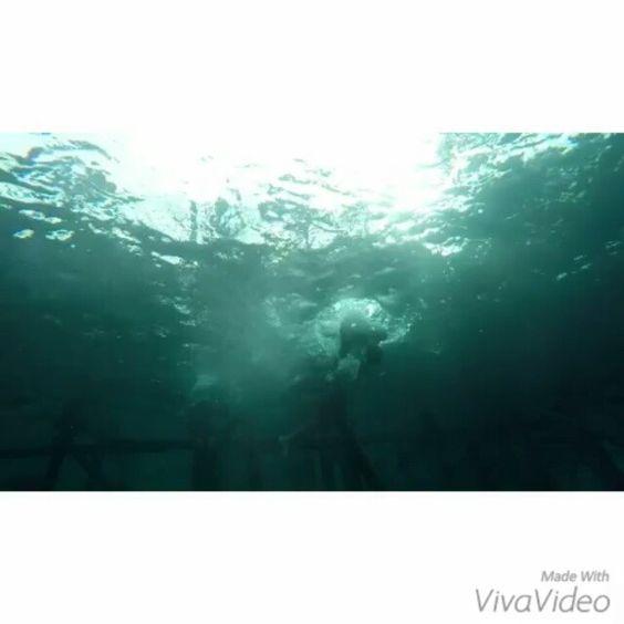 Let me take a selfie @alteno91 @renata_petra @syenieangel @theana_23 #like #likeforlike #like4like #likeback #l4l #follow #followme follow #followforfollow #follow4follow #f4f #tagforlike #bestoftheday #photooftheday #gopro #vivavideo #boys #amazing #spam #tflers #spamforspam #instalike #instagood by icheno
