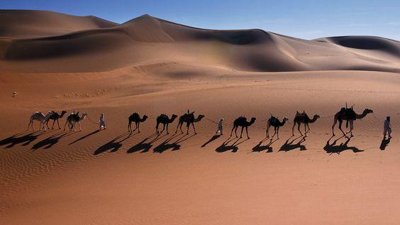 Camel caravan through the Sahara Desert near Djanet, Algeria (© Frans Lemmens/SuperStock)