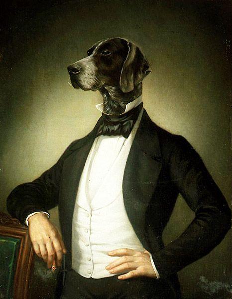 Assicurate il vostro migliore amico - San Marino Notizie - http://bit.ly/1Q2WQ9x - Pet Community and Social Network