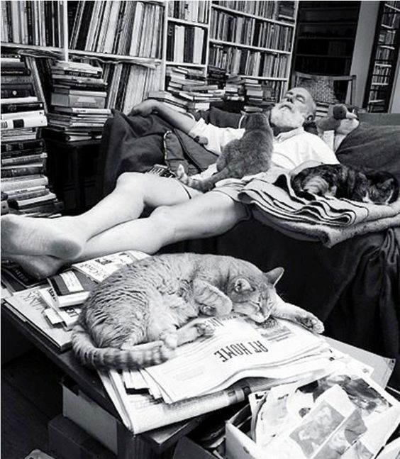 """Edward Gorey, known for his macabre, gothic illustrated books including The Gashlycrumb Tinies and The Doubtful Guest, as well as for illustrating for others' books such as T.S. Eliot's Old Possum's Book of Practical Cats.   """"Books. Cats. Life is good."""" - Edward Gorey"""