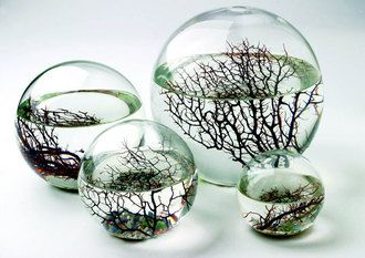 Awesome Geek Gifts - Ecosphere