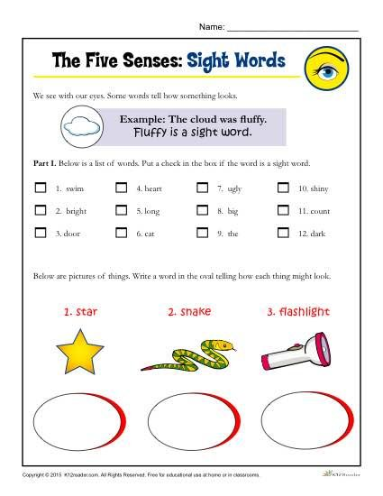 Use your five senses to write about autumn riley