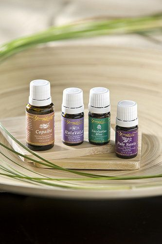 Bed Bug Protocol with Essential Oils | Aromatherapy Essential Oils | Aromatherapy Living with Young Living Essential Oils