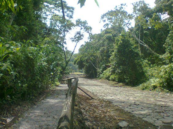 Guayabo (Parque Nacional y sitio arqueológico)
