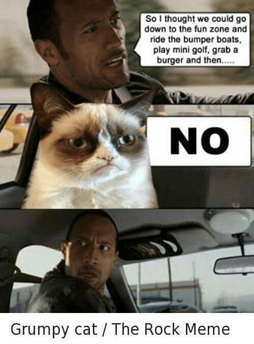 Grumpy Cat and The Rock!