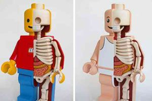 Dissecting Giant Lego Men by Jason Freeny – view more (giant) images @ http://www.juxtapoz.com/Current/dissecting-giant-lego-men-by-jason-freeny – #onourradar #giantlegoman #anatomy