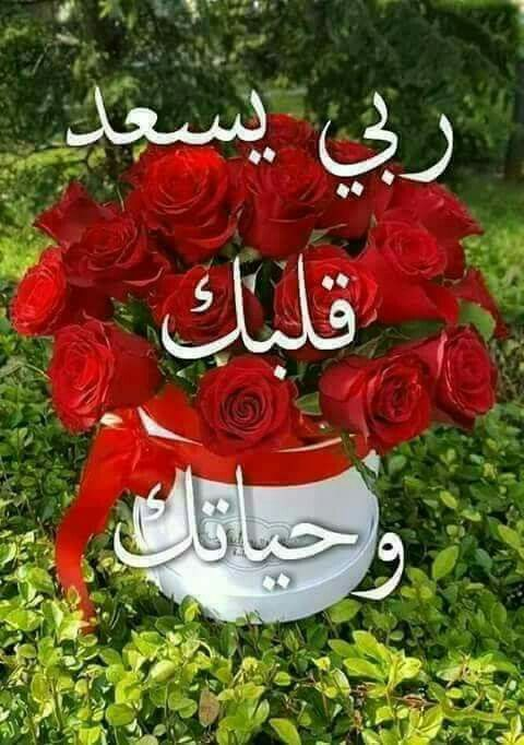 Pin By Lusol Angel On ربي يسعد قلبك Good Morning Images Flowers Beautiful Morning Messages Good Morning Roses