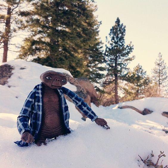 E.T. explores the forest