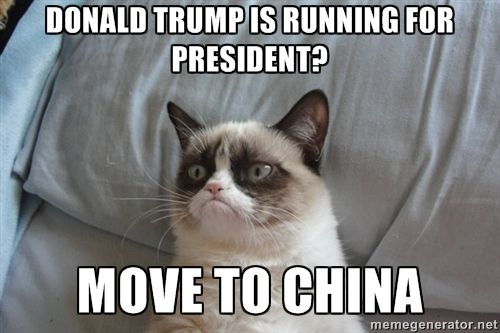 Donald Trump IS Running For President? Move to China - Grumpy cat ...: