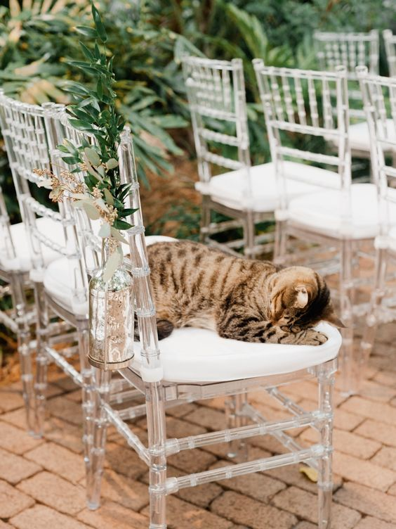 Beautiful Key West Wedding at the Ernest Hemingway House - MODwedding