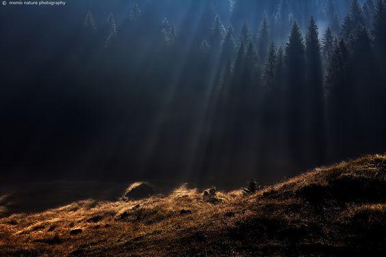 Revelation by Emilio Momo Tonin on 500px