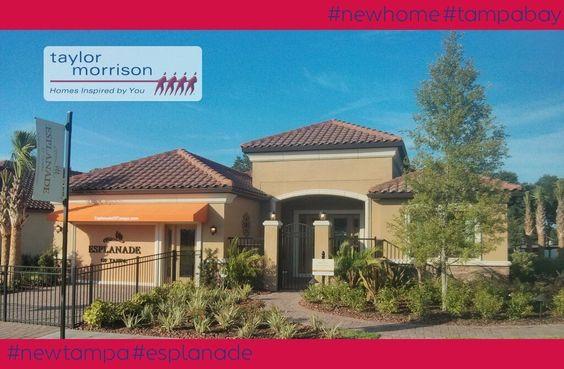New Tampa - Esplanade - Cararra VII by Taylor Morrison New Homes Tampa Bay