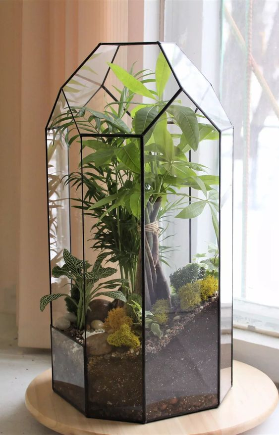 20 Chic #Geometric #Terrarium #Decoration Ideas