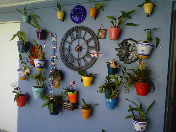 Hang orchids in colorful pots on a wall around a clock.