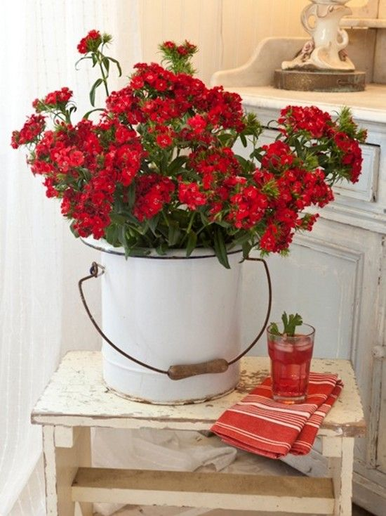 Red flowers, vintage white pot: