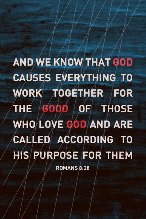 romans 8:28 // #lifeverse