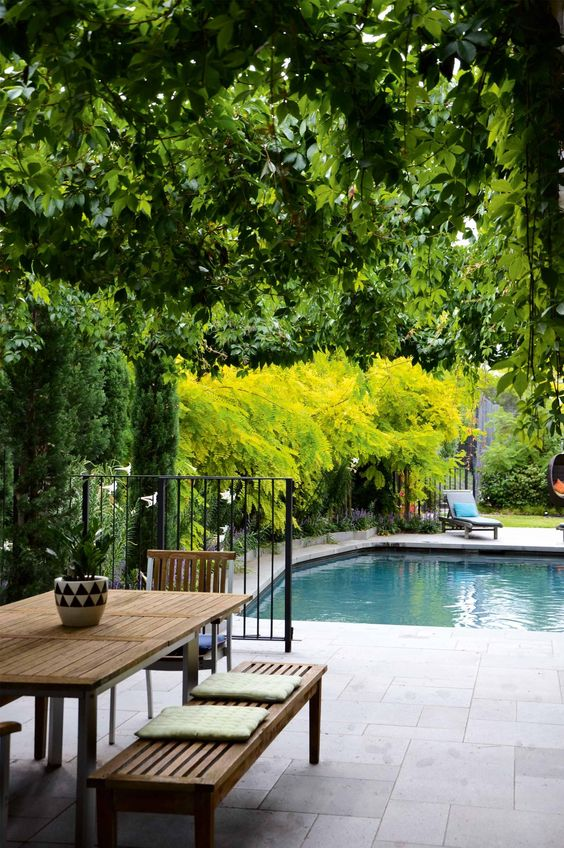 Inner City Backyard Ideas :  backyard pools gardens caregiver decking design flooring tile cities
