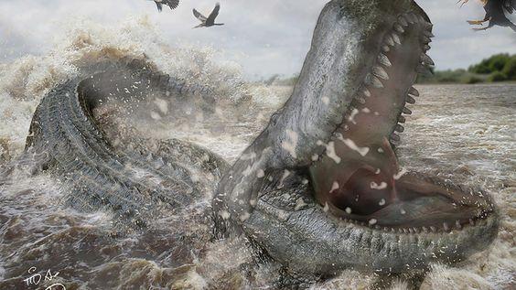 Sería la primera extinción masiva desde la desaparición de los dinosaurios. (EFE) - EFE