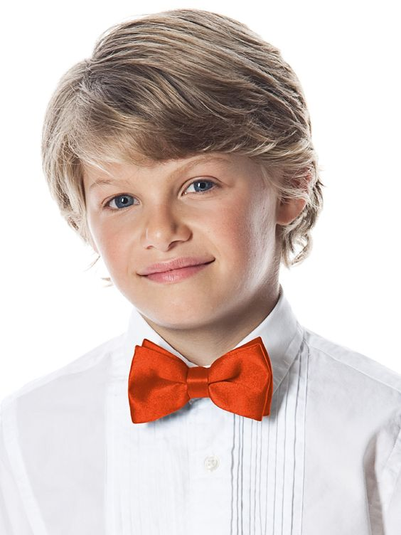 Boy's Clip Bow Tie in Duchess Satin http://www.dessy.com/accessories/boys-clip-duchess-bow-tie/ - $6 from Dessy