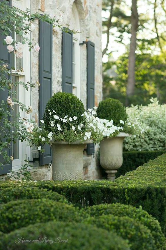 stone home boxwoods & white flowers.: