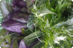 Common ground community farm, Burnaby, Share (Small) $500  - $25 × 20 Weeks  - Late June untill Late october