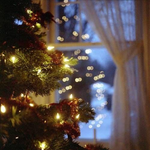 Les Yeux Qui Brillent Le Cottage De Gwladys Fond Ecran Noel Illuminations De Noel Decoration Noel
