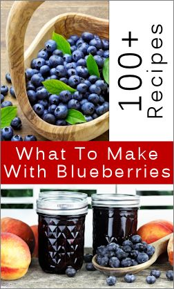 100+ recipes to make with blueberries